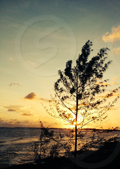 Cayman sunset photo