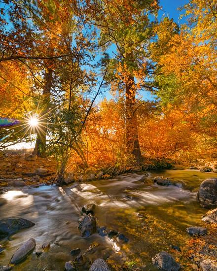 Autumn fall colors stream Sunburst long exposure photo