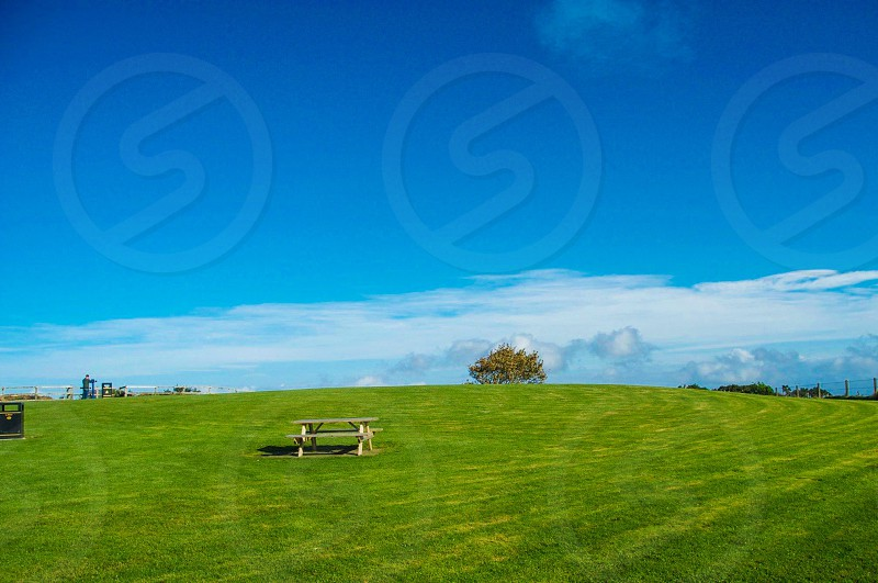 brown wooden picnic table in middle of green open grass filed under blue sky during daytime photo