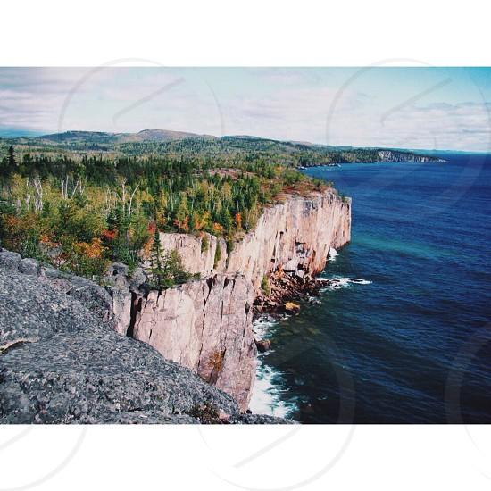 green tree near cliff photo