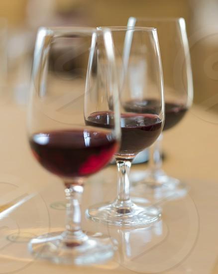 Oenology tasting of great vintage red wine vintages photo