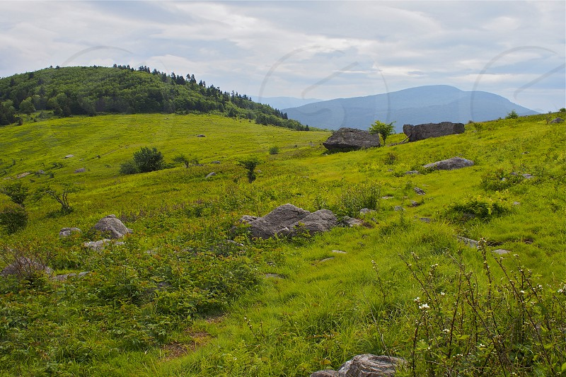 Rolling hills in Grayson Highlands Virginia. Boulders. Mountains. Spring. Green. photo