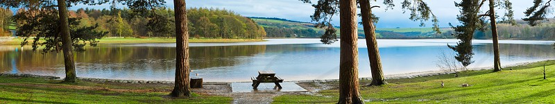 Panoramic view of Swinsty Reservoir in North YorkshireEnglandUK. With Pine trees a park bench and some ducks in the scene.There are reflections in the water and green grass in the foreground. photo