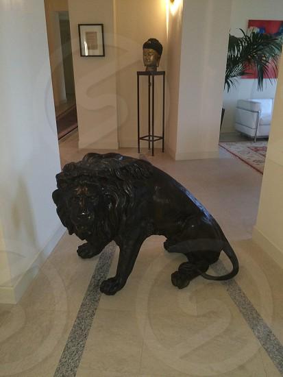 lion sculpture photo
