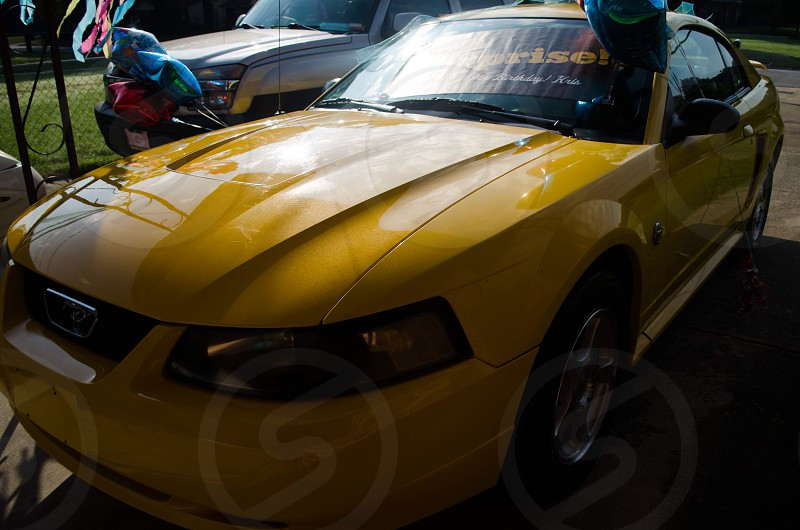 Yellow 40th Anniversary Ford Mustang photo