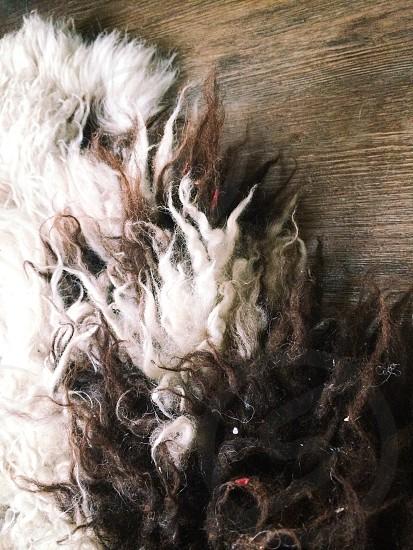 Sheepskin rug photo