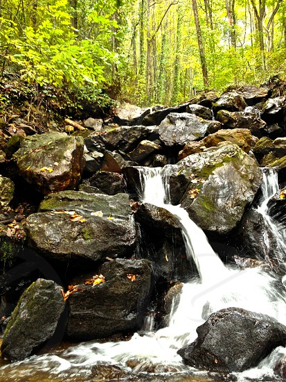 Enchanted Forrest River Rocks Hiking Fall Green Trees photo