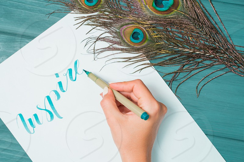Calligrapher student practices in writing word inspire with green marker on canvas. Creative artist freelancer working on project at home studio. Peacock feathers. photo