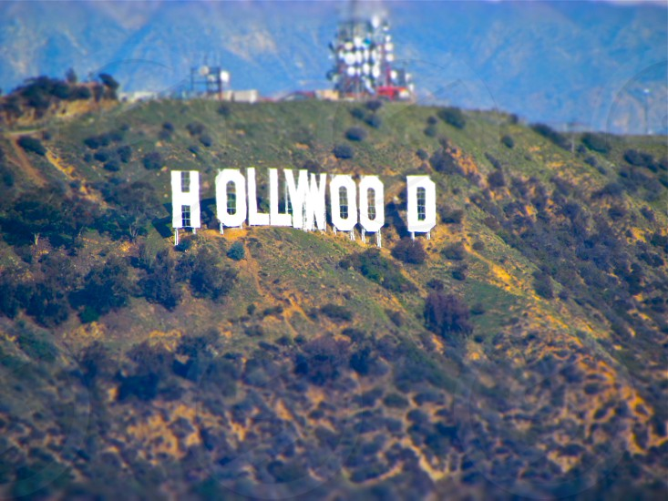 The Hollywood Sign photo