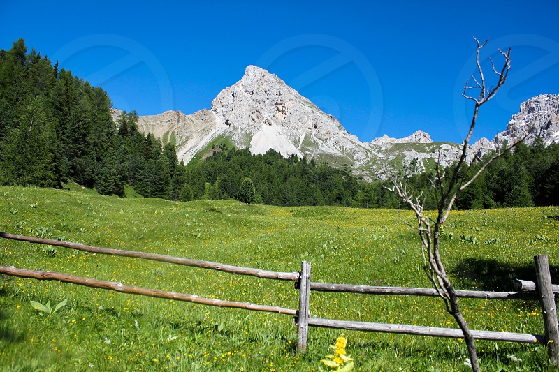 Dolomiti on a sunny summer day. photo