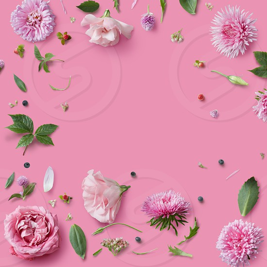 frame of pink flowers on a pink background with space for text photo