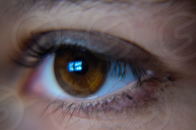 This is a close-up or macro photo of an eye and the reflection in it.   photo