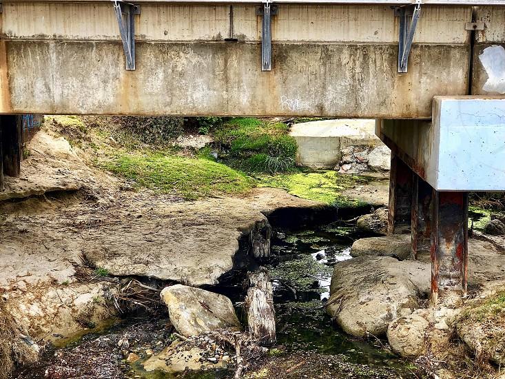 Green With Env Challenge Bright Gwen Moss Under a Bridge  photo