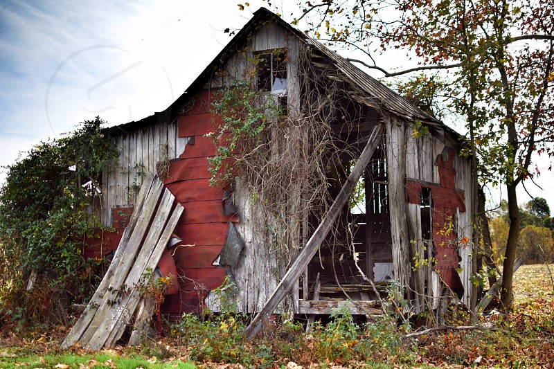 One of my favorite old abandoned barns- back roads in Virginia.  photo