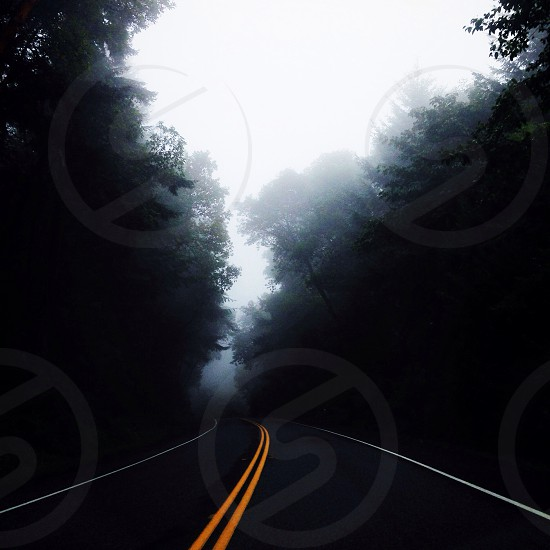 road view photo