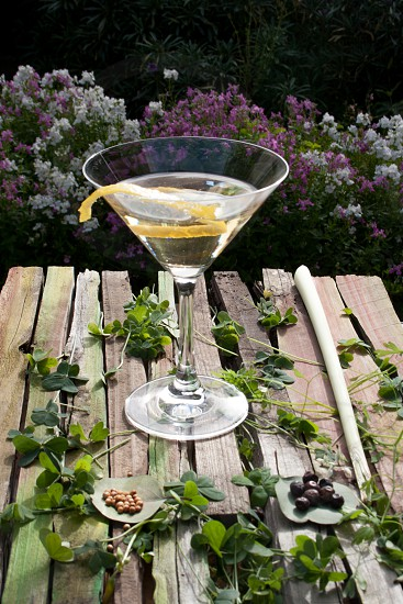 gin cocktail with lemon peel lemon grass coriander seeds and juniper berries on garden table photo
