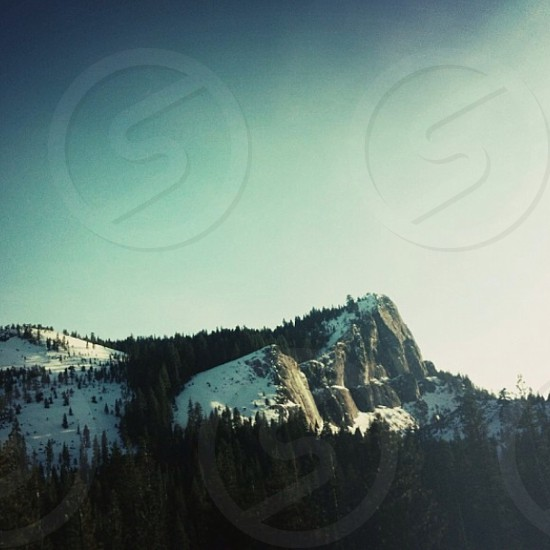 snow covered rock mountain with green tall pine trees photo