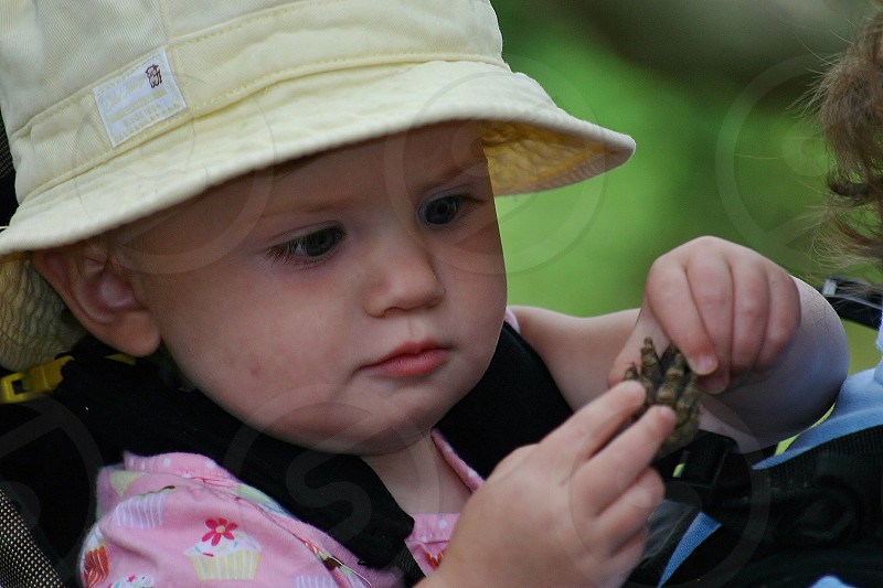 Baby in a backpack to go exploring - baby girl backpack explore pine cone face concentrate examine sunhat sweet photo