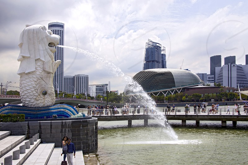 view of the fountain Merlion in the Marina bay Singapore photo