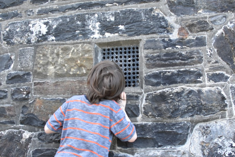 A young boy climbed the stairs to peek inside a historic tower photo