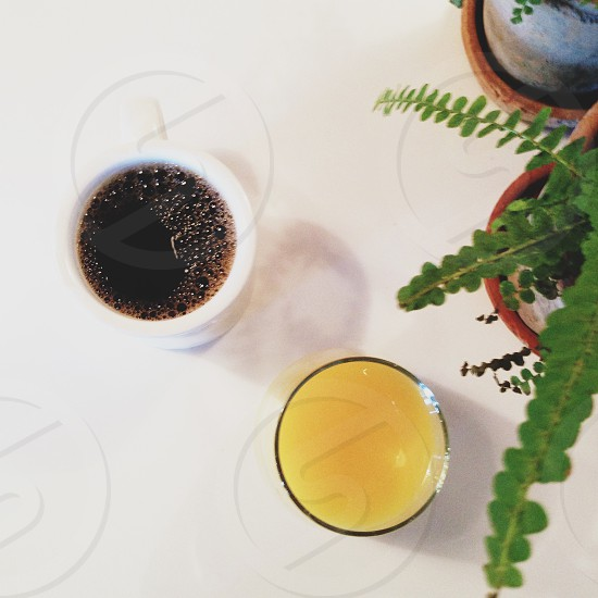 Coffee and mimosa.  photo