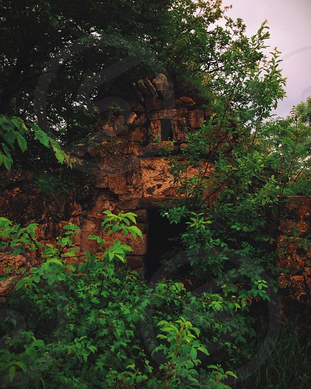 brown brick castle and cave and green trees view photo