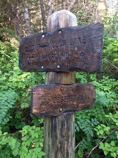 Deseret Peak trail sign. Utah.  photo