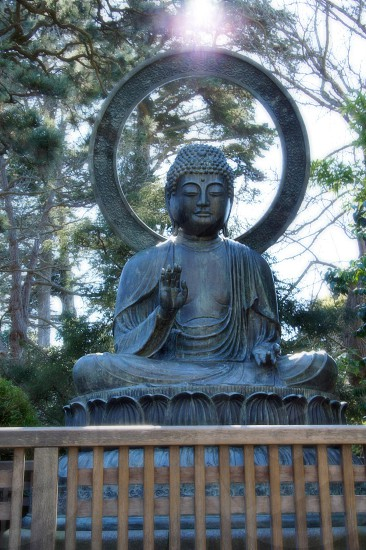 gray buddha statue photo