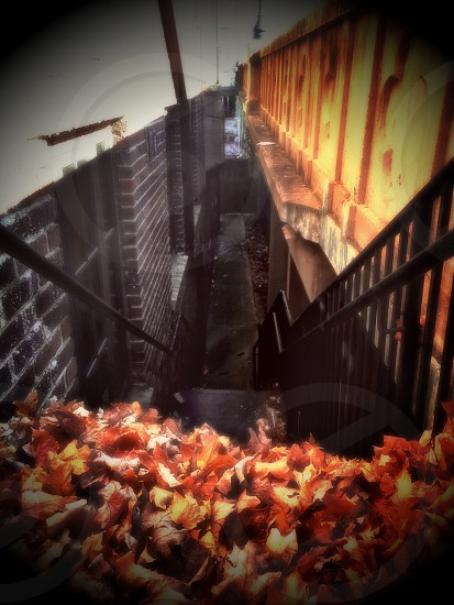black metal handrails photo