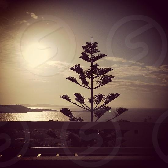 Sun set on Mykonos photo