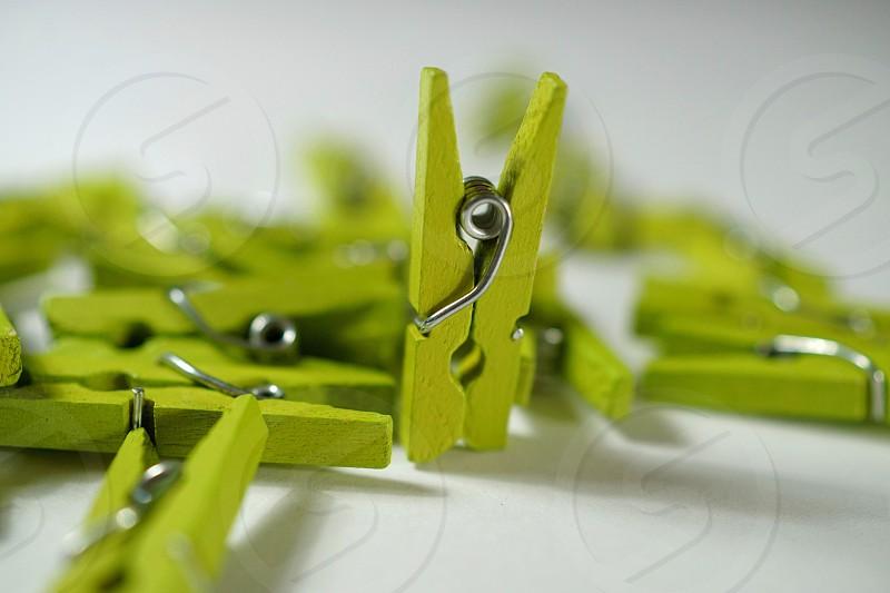 Clothespins  photo