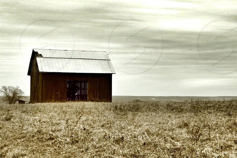 brown field and housephoto photo