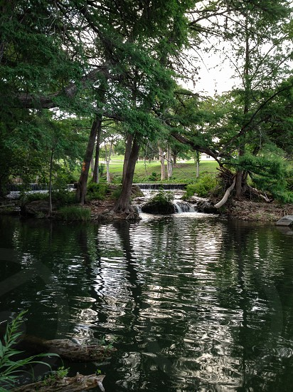 river near trees photo