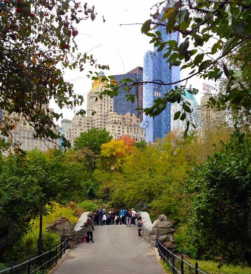 Manhattan skyline Central Park photo