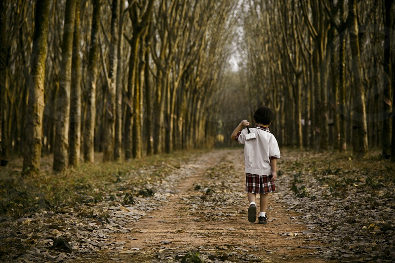 Young school boy walking away in the forest path walkway kidchildren trees benbdprod photo