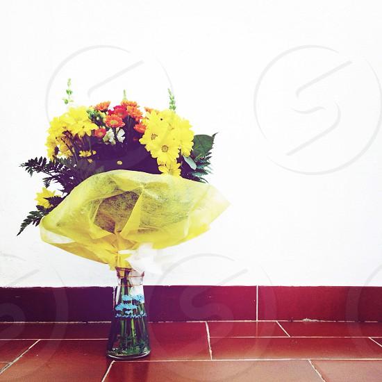 bouquet of daisy flower photo