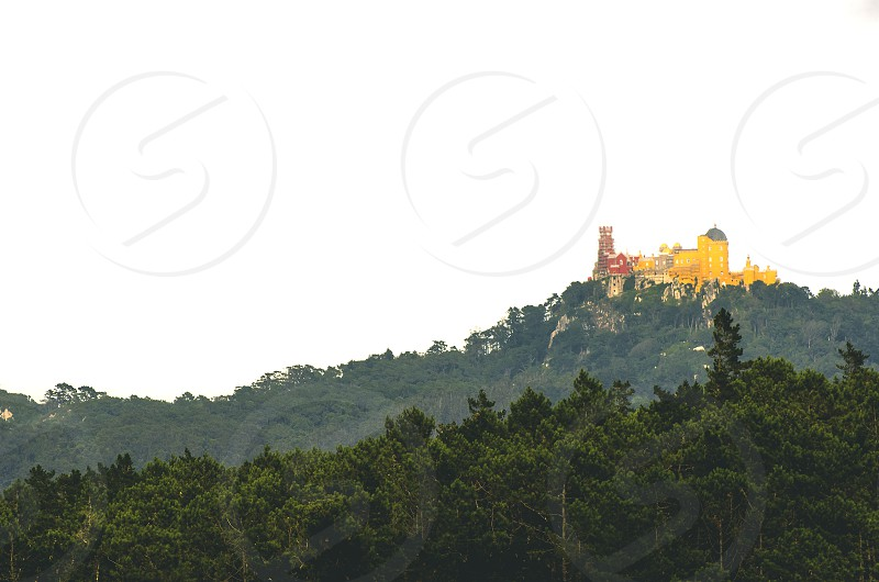 Pena Palace seen from the Convent of the Capuchos photo