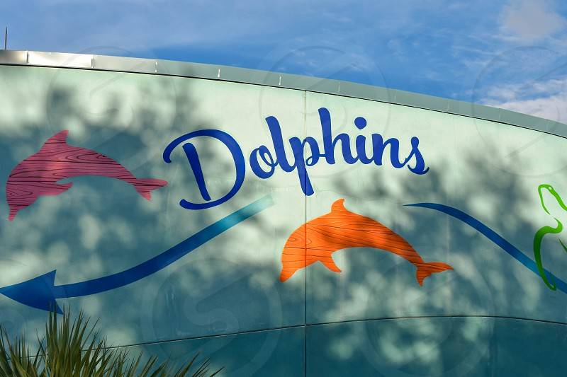 Orlando Florida. March 09 2019.  Colorful Dolphins sign on wall at Seaworld in International Drive area. photo