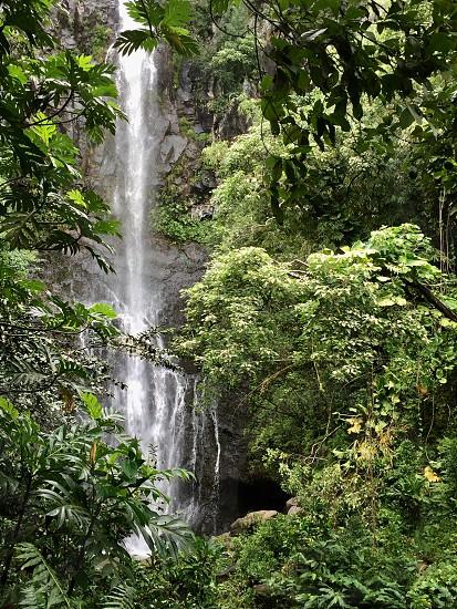 Maui Waterfalls Road to Hana photo