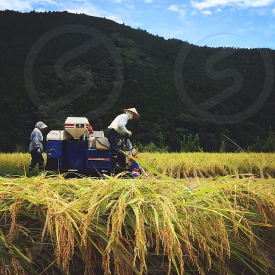 farmer sitting on rice machine photo