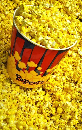 yellow popcorn photo