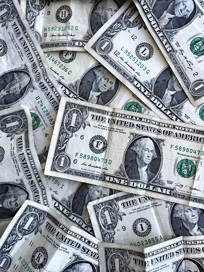1 u.s. dollar bills photo