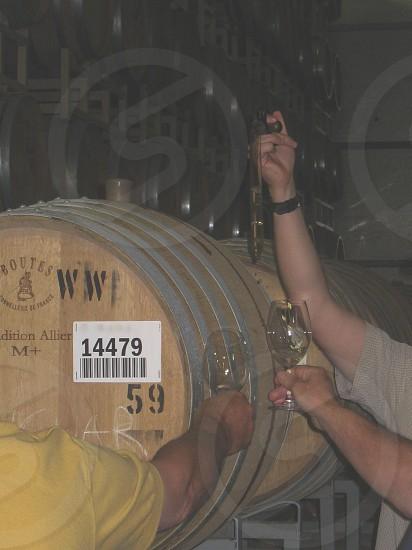 Wine thieves photo