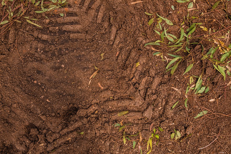 Texture of brown mud with tractor tyre tracks. photo