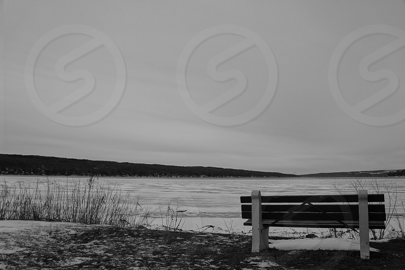 brown white bench chair beside lake photo