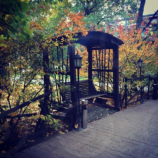 Bench park autumn fall photo