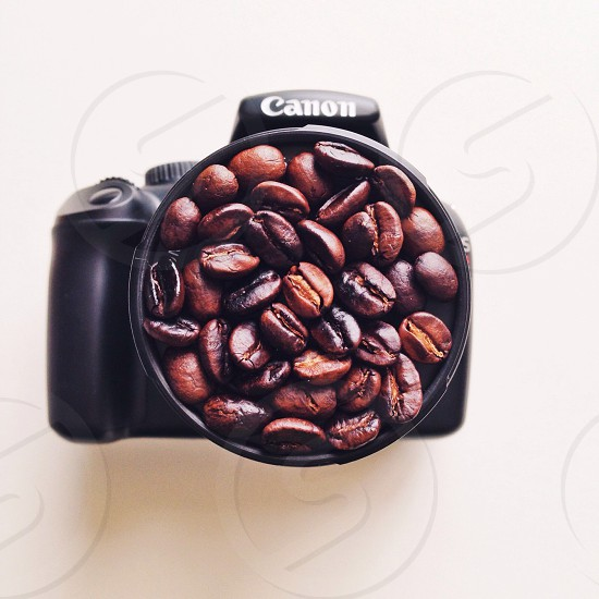 brown coffee beans on black canon camera cup photo