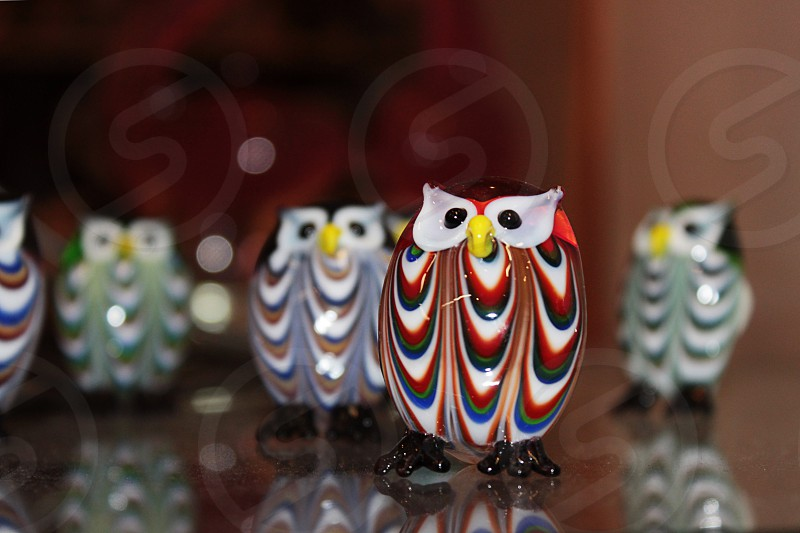 Mini Glass owls photo