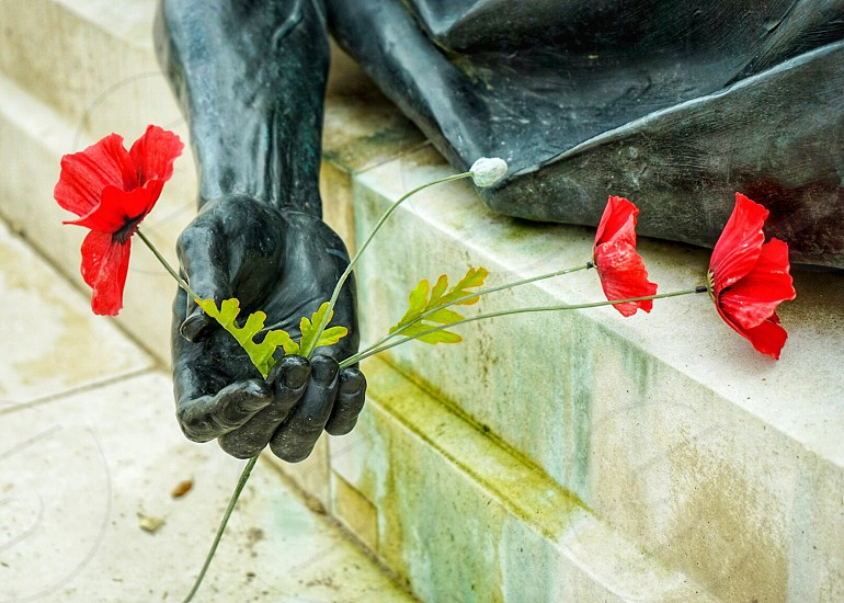 Poppies held in a bronze statue's Hand photo