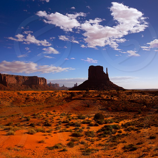 Monument West Mitten Butte in morning Utah National Park photo